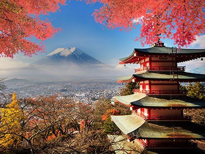 Tea Traditions Around the World - Japan